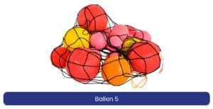 Ballen 5 lenen product
