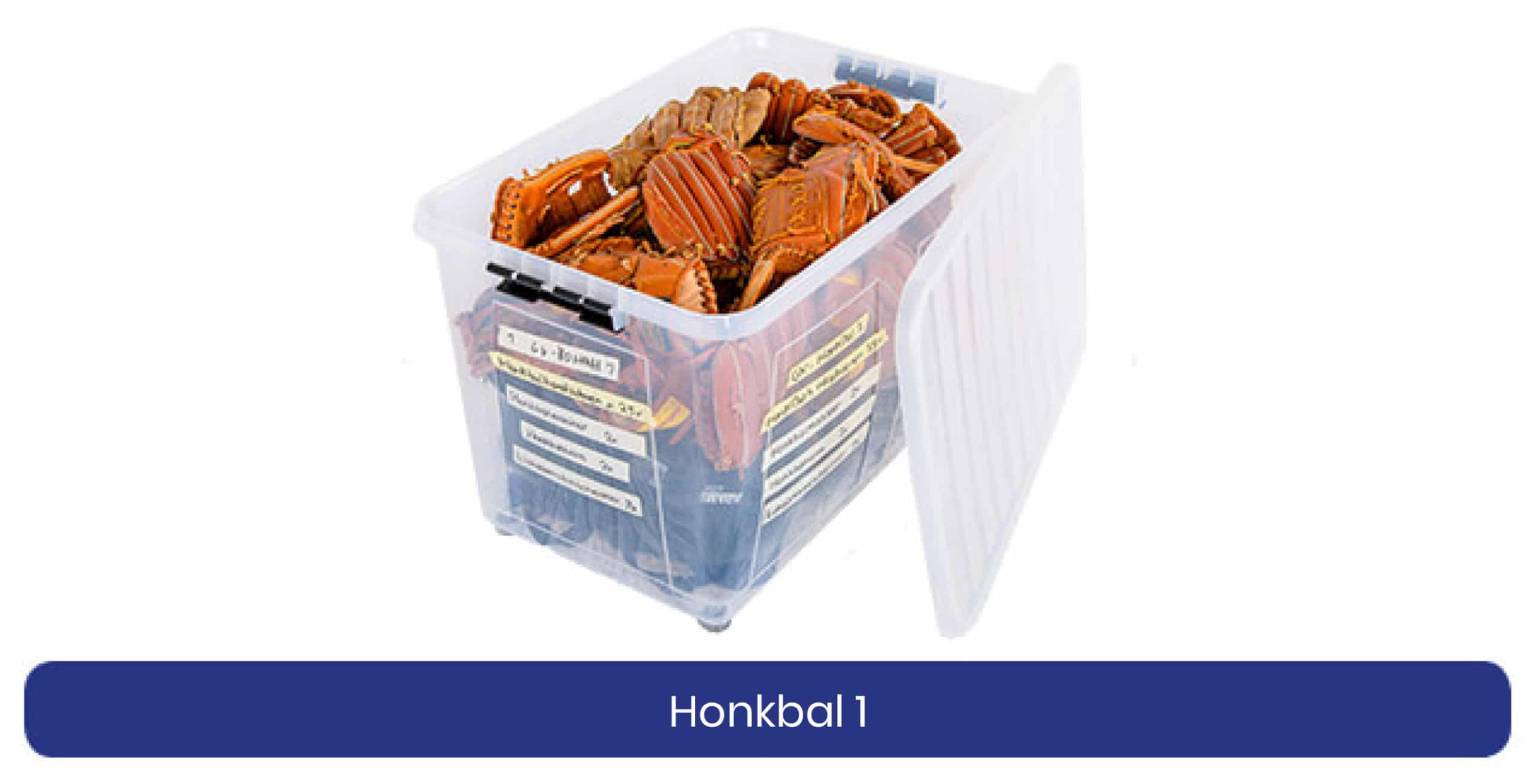 Honkbal 1 lenen product