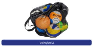 Volleybal 2 lenen product